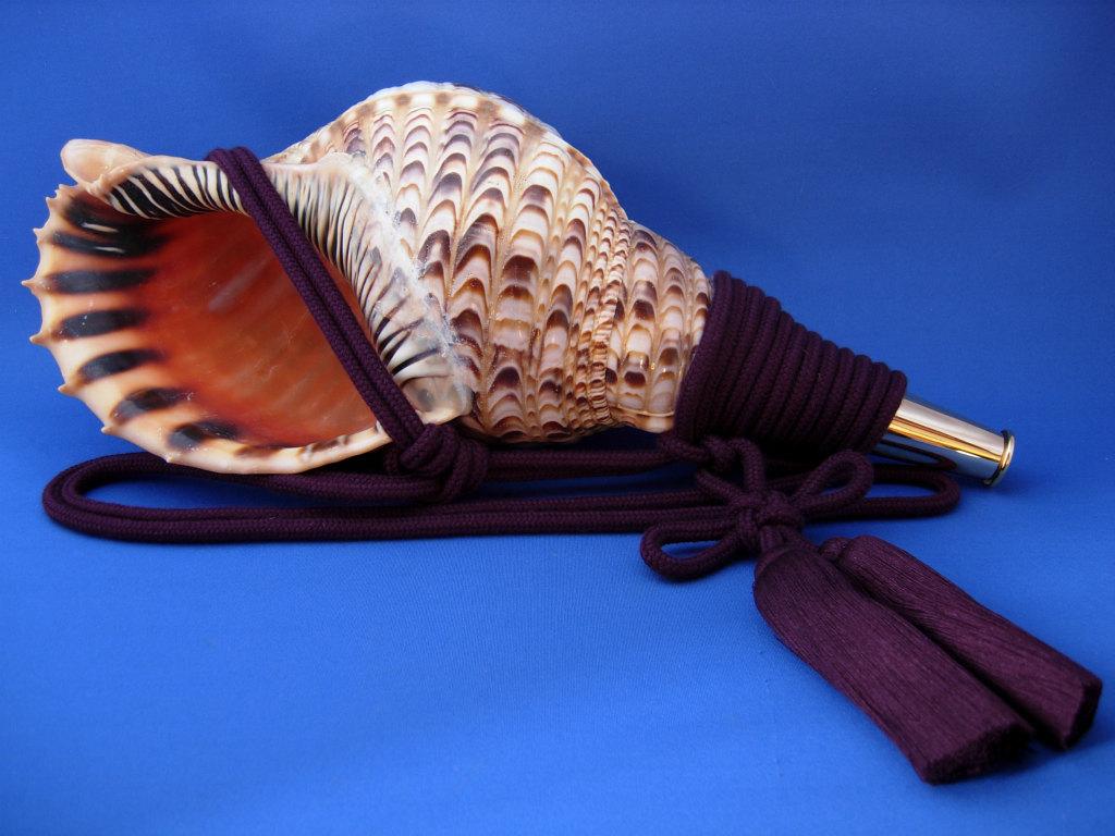 画像1: 戦国法螺貝 大名 黄金の法螺貝 ・戦国大名が使用したと思われる法螺貝をイメージして、よ