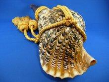 他の写真2: 龍神の法螺貝