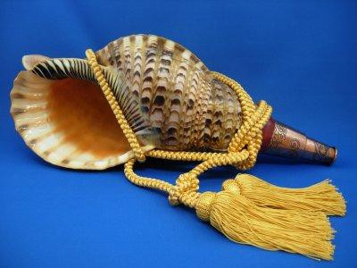 画像1: 龍神の法螺貝