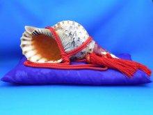 他の写真2: 新発売 法螺貝飾り 座布団 サイズ 〔 大 〕