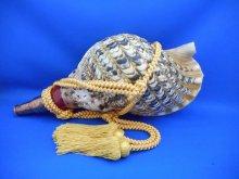 他の写真1: 龍神の法螺貝II