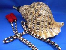 他の写真2: 戦国法螺貝 出陣 雅 特別限定品