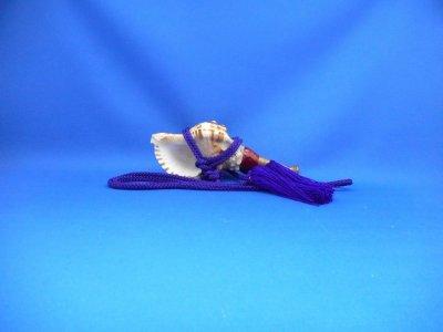 画像1: 戦国法螺貝 ミニ