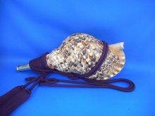 他の写真1: 戦国法螺貝 大名 黄金の法螺貝