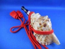 他の写真2: 新発売 特別限定品 戦国法螺貝 ミニ 歌口木製 桜と雲